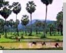 Mukdahan الفنادق (نهر ميكونغ الفنادق الصغيرة)